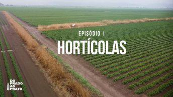 Hortícolas
