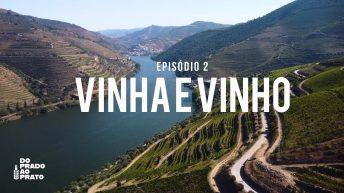VINHA E VINHO